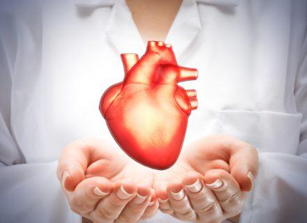 Probiotikų formulė širdies ir kraujagyslių sistemai