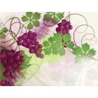Kas bendro tarp širdies ir raudonųjų vynuogių?