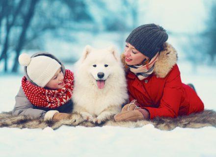 Žiema. Kaip užimti vaikus?
