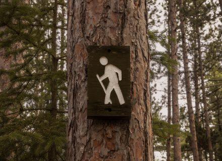 Vyrų šlapimo nelaikymas – senatvės požymis?