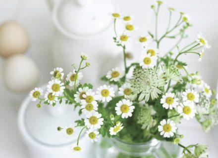 Pasitelkime aromaterapiją duše