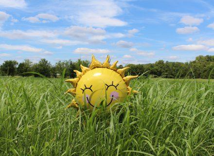 Gal Jums trūksta vitamino D?