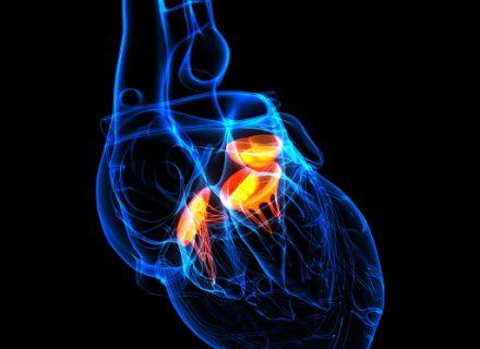 Saugokite savo širdį nuo  streso