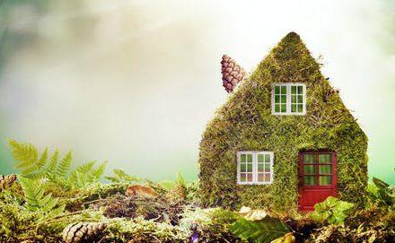 Aromaterapija – gamtos dovana