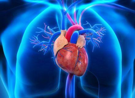 Kas dažniausiai serga arterine hipertenzija?